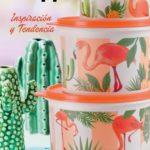 Catalogo Cocina Tupperware Campaña 16 Argentina 2018