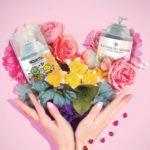 Catalogo 1 Perfumes Sandra Marzzan Enero Febrero Verano 2019