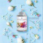 Catalogo 1 Perfumes Sandra Marzzan Enero Febrero 2020